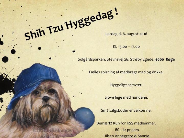 ShihTzuHyggeDag2016
