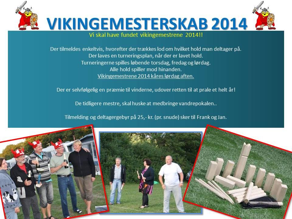 VIKINGEMESTERSKAB 2014