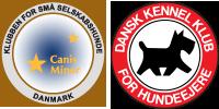 Dansk Kennel Klub og Klubben for Små Selskabshunde
